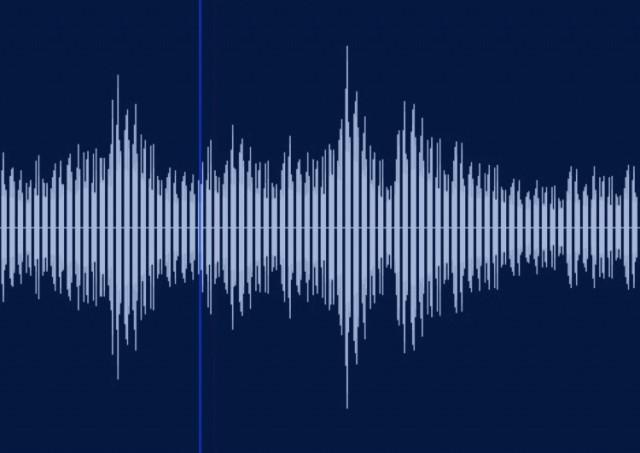 声紋分析について